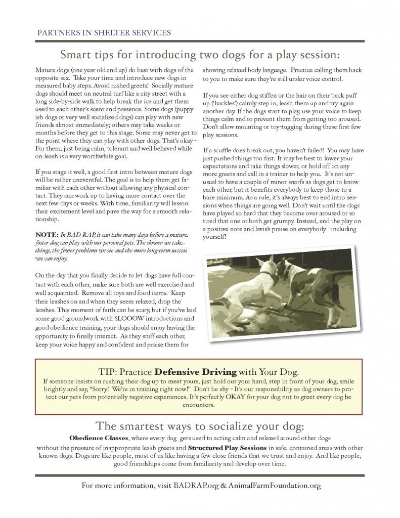 Foster Handbook Addendum_Page_20