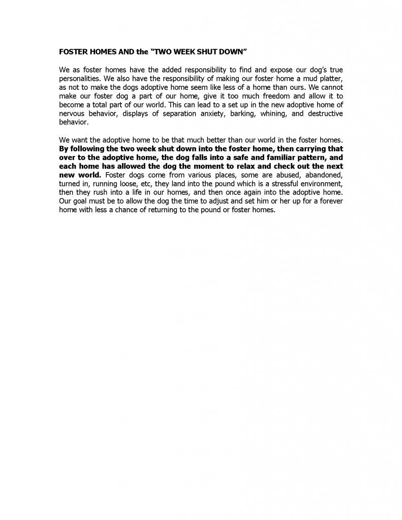 Foster Handbook Addendum_Page_25